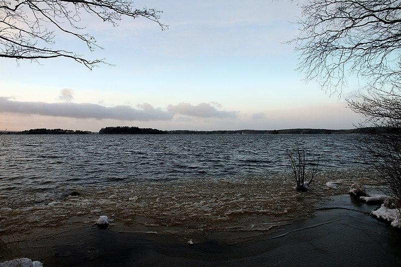Träd tornar upp sig över sjön Toften i Laxå kommun